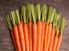 Óleo Vegetal de Cenoura
