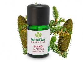 Óleo Essencial Pinho da Sibéria 10 ml ( Terra Flor )