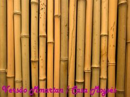 Essência Versão Bamboo (MMartan / Casa Moyses)