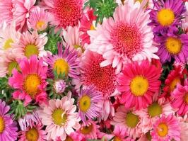 Essência Vela Floral