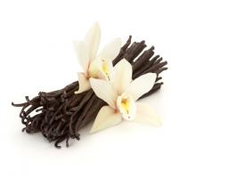 Essência Vanilla (Locci)